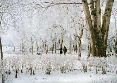 Bad Birnbach - Kurpark im Winter