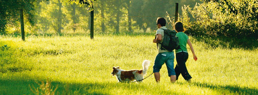 Gesund und Vital für ein langes Leben – Wie bleibe ich gesund?