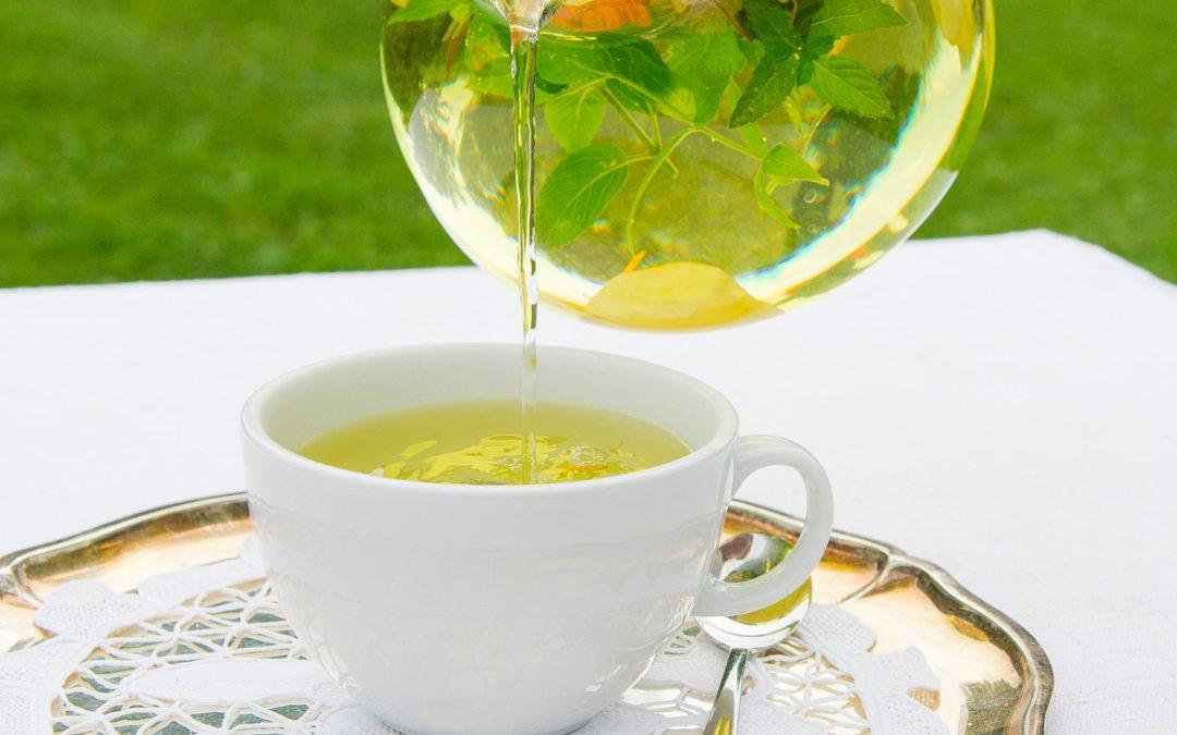 Brennnessel-Tee-Kur im Frühjahr
