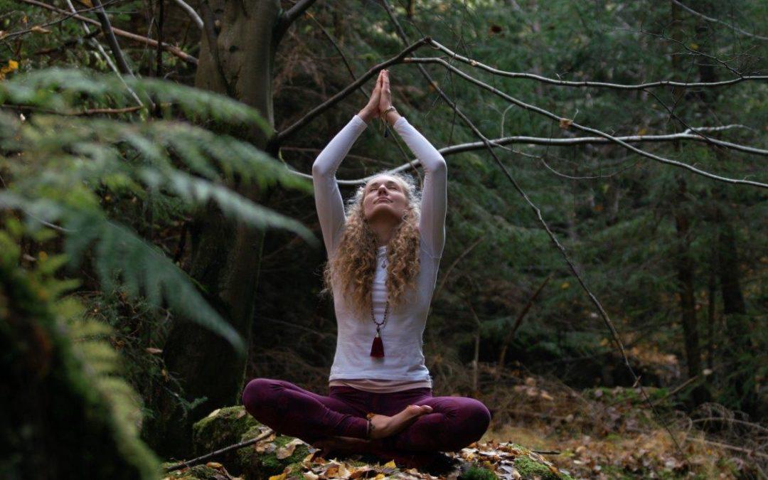 Guten Morgen im Wald – Erdung – Balance – Fokus – mit Lena Sommer